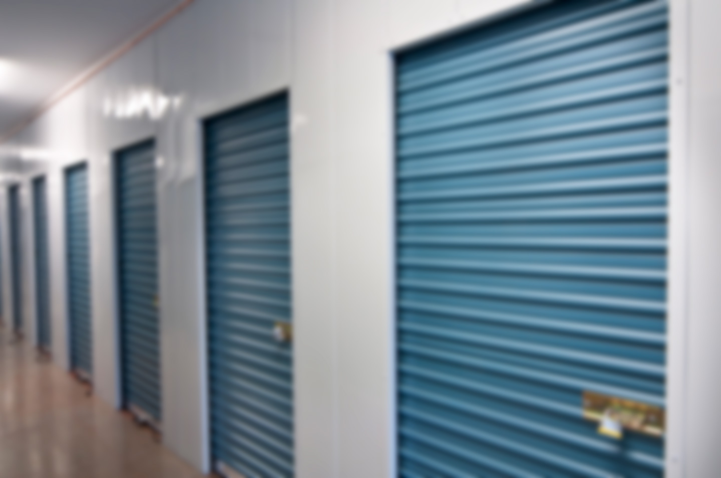 Storage unit doors with locks